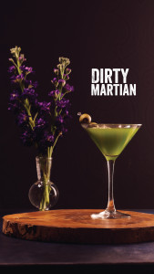 TJS-Screen-Dirty-Martian